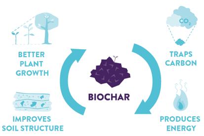 Darstellung zur Herstellung von Pflanzenkohle
